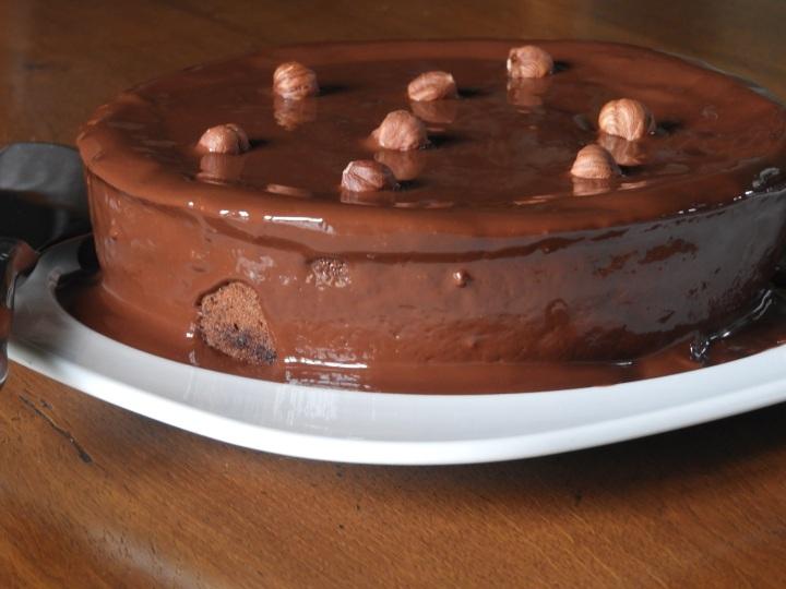 gateau-leger-aux-chocolats (5)