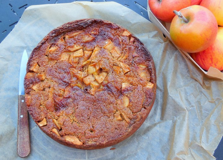 gateau-aux-pommes-du-jardin (3)