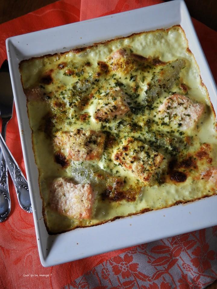 Gratin d'endives et saumon frais, sauce crémée aucurry
