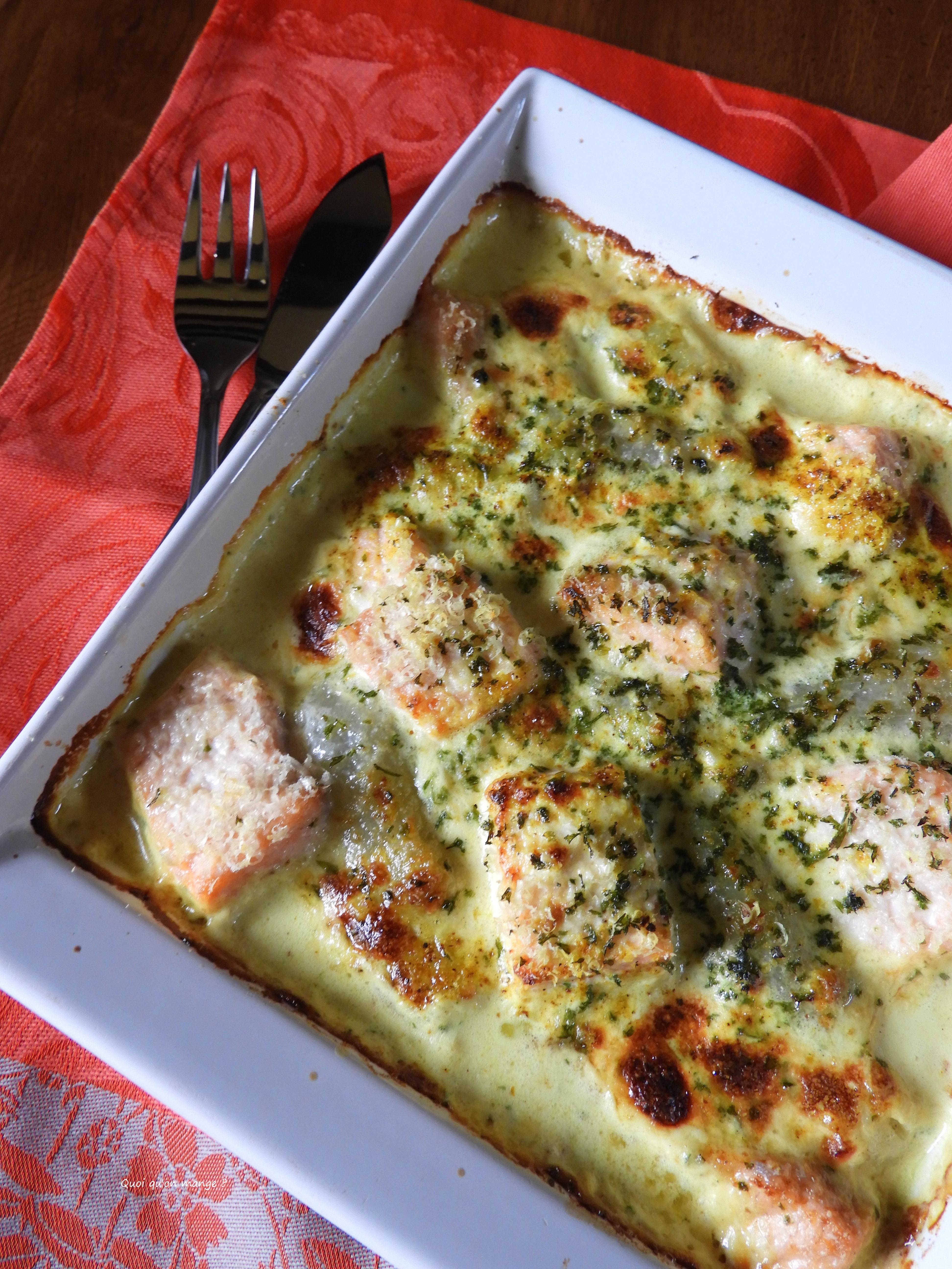 Gratin endives et saumon frais, sauce au curry